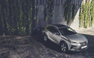 02-Lexus-NX-300h