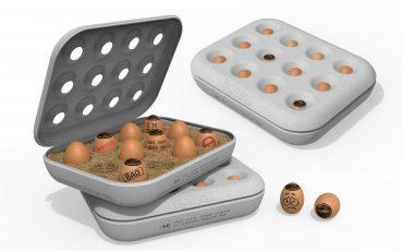 Finalist-2-Honest-Egg-by-Aesthetid-Paul-Yong-Rit-Fui-en-Jaihar-Jailani-Bin-Ismail