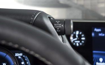 25-Lexus-ES-F-SPORT